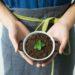 Zaczynamy sadzić rośliny !